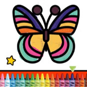 Colour the Butterfly after its metamorphosis