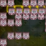 Cat Tetris