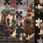 Christmas Dogs Jigsaw Puzzle