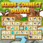Connect Birds