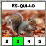 Count the number of syllables in Portuguese