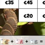 Euro Banknotes Photo Puzzle