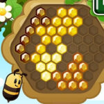 Honeycombs Hexagonal Puzzle