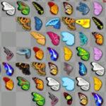 Kyodai Butterflies