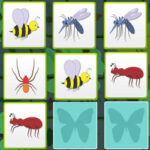 Pairs of Insects: Memory Game