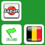 Memory Matching: Flags of the World