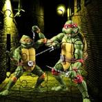 Ninja Turtle Puzzles