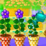 Online Garden