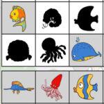 Shadows of Sea Animals