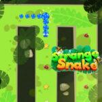 Strange Snake in Maze
