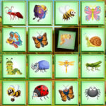 Visual Perception: find the insect