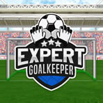 Soccer Goalkeeper Challenge Game